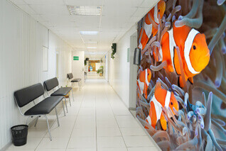 Wall Murals For Dentists Hospitals Amp Healthcare