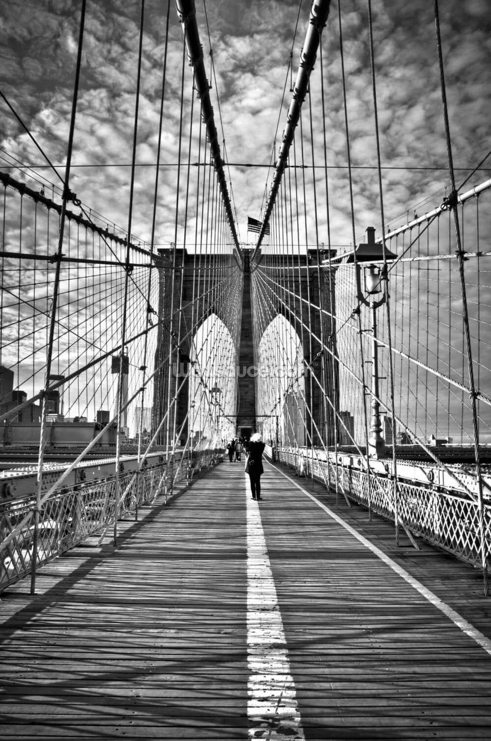 Girl Photographing Brooklyn Bridge Wallsauce Uk