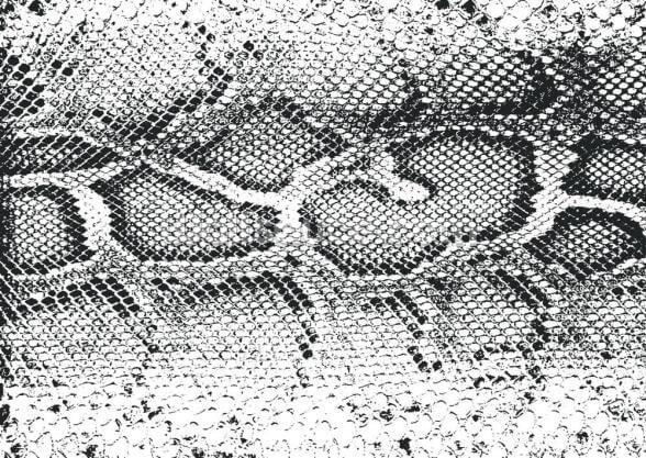 Black And White Snake Print Wallpaper Wallsauce Us
