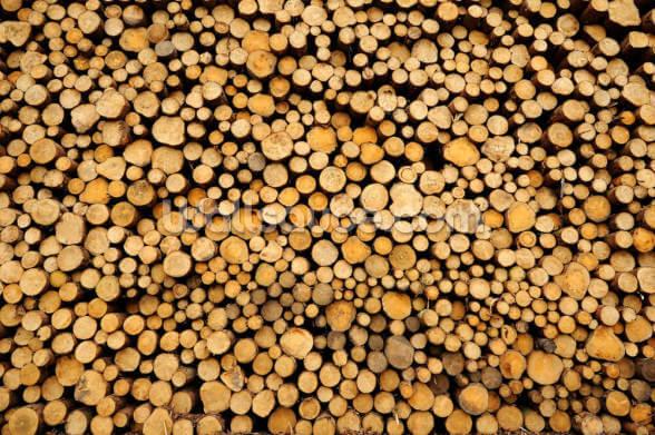 Small Stacked Logs Mural Wallpaper Wallsauce Uk