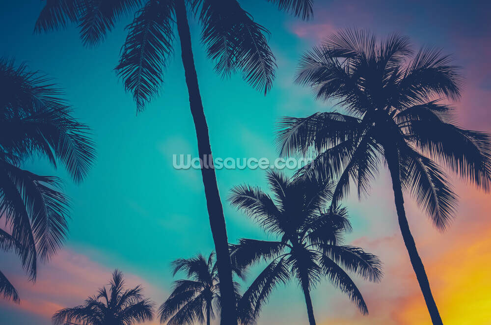 Hawaii Palm Trees At Sunset Wallpaper Mural Wallsauce Us