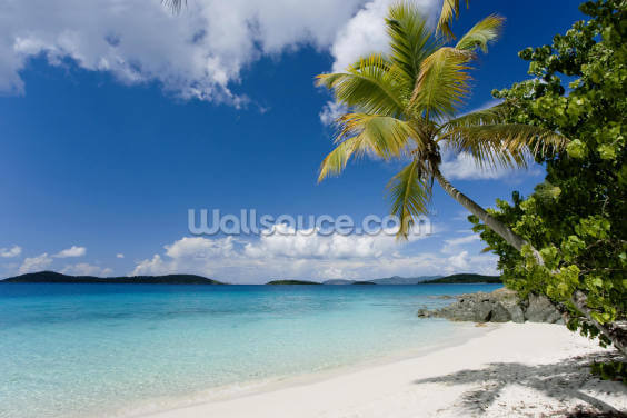 U.S. Virgin Islands, St. John Wallpaper Wall Murals