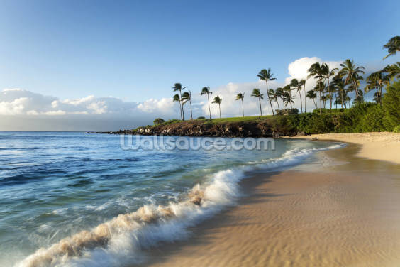 Hawaii, Maui, Kapalua Beach Wallpaper Wall Murals