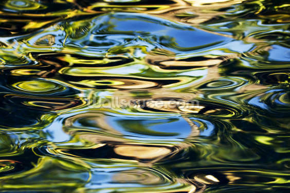 Abstract View Of Colorful Reflections On Calm Water Wallpaper Wall Murals