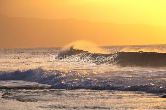 Wave At Sunset With Spray Wallpaper Wall Murals