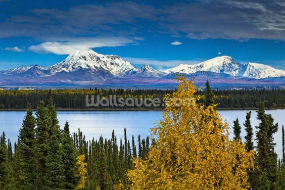 View Of Mt. Sanford and Mt. Drum with Willow Lake Wallpaper Wall Murals