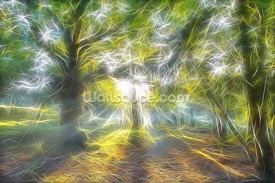Light Misty Trees Wallpaper Wall Murals