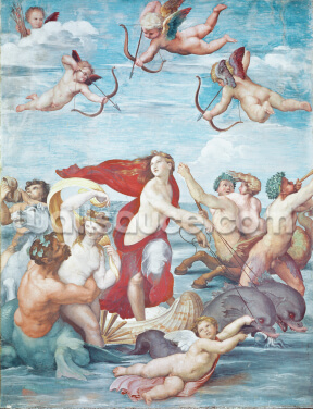 The Triumph of Galatea, 1512-14 (fresco) Wallpaper Wall Murals