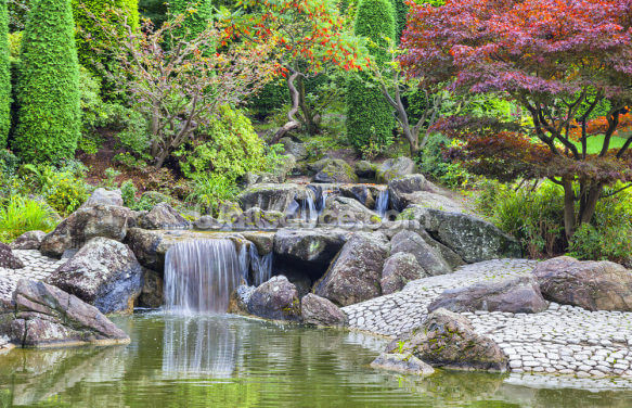 Cascade Waterfall in Japanese Garden in Bonn Wallpaper Wall Murals
