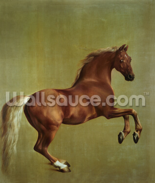 Whistlejacket, 1762 Wallpaper Wall Murals