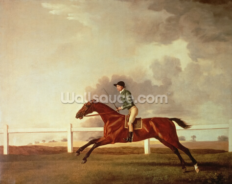 Bay Malton with John Singleton Up, c.1767 (oil on canvas) Wallpaper Wall Murals