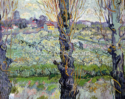 View of Arles, 1889 (oil on canvas) Wallpaper Wall Murals