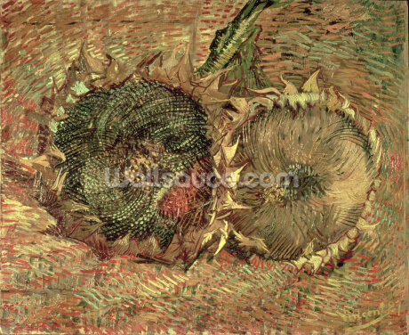 Two Cut Sunflowers, 1887 (oil on canvas) Wallpaper Wall Murals