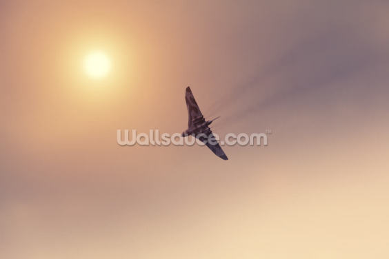 Vulcan Bomber Towards the Sun Wallpaper Wall Murals
