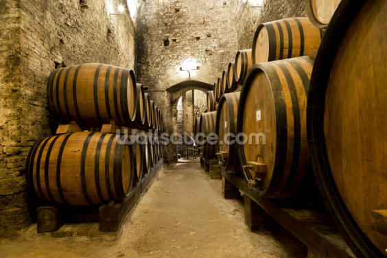 Wine Barrels in the old Cellar Wallpaper Wall Murals