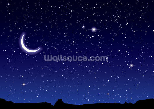 Space and Moon Landscape Wallpaper Wall Murals