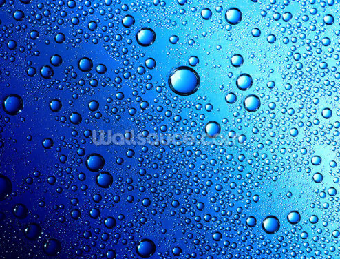 Drops on Glass Wallpaper Wall Murals