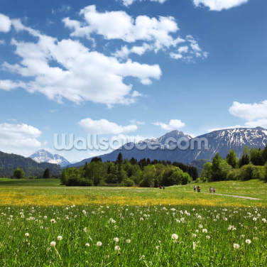 Mountain Air Wallpaper Wall Murals