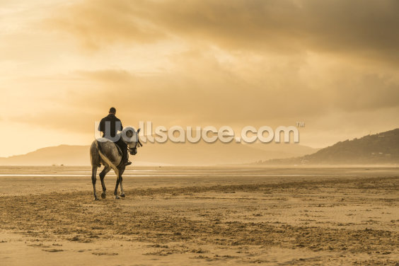 Beach Ride Wallpaper Wall Murals