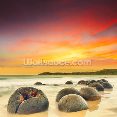 Moeraki Boulders Wallpaper Wall Murals