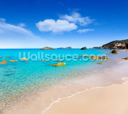 Ibiza Beach Wallpaper Wall Murals