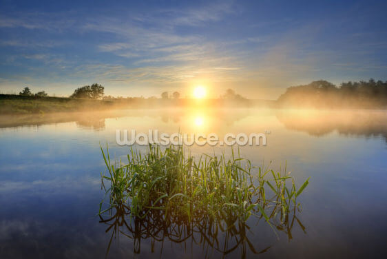 Sunrise Over the Pond Wallpaper Wall Murals