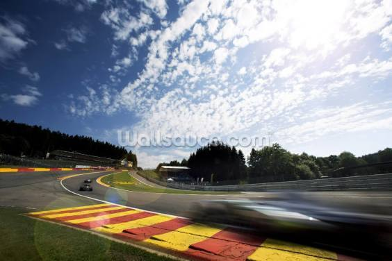 Radillion Corner, Spa-Francorchamps 2013 Wallpaper Wall Murals