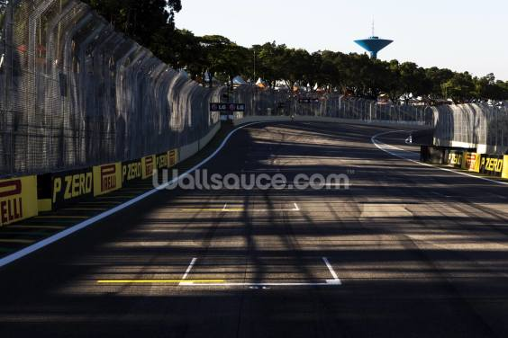 Grid, Brazillian 2012 Grand Prix Wallpaper Wall Murals
