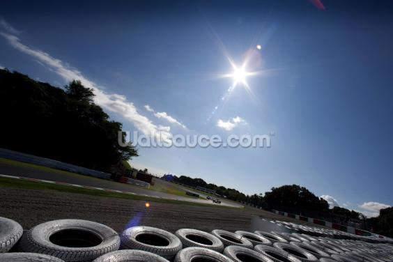 Degner Curve, Suzuka, Japan Wallpaper Wall Murals