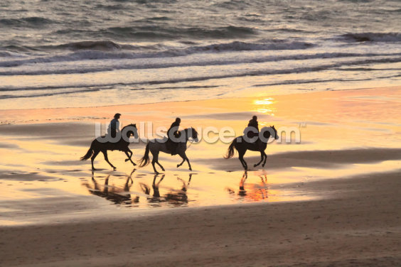 Sunset Horse Ride Wallpaper Wall Murals