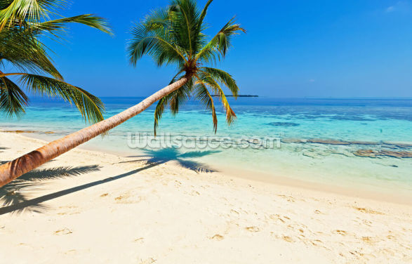 Palm Fringed Beach Wallpaper Wall Murals