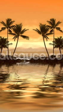 Tropical Sunset Wallpaper Wall Murals