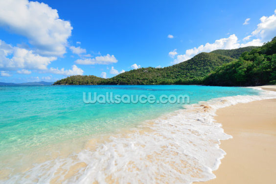Beautiful Virgin Islands Beach Wallpaper Wall Murals