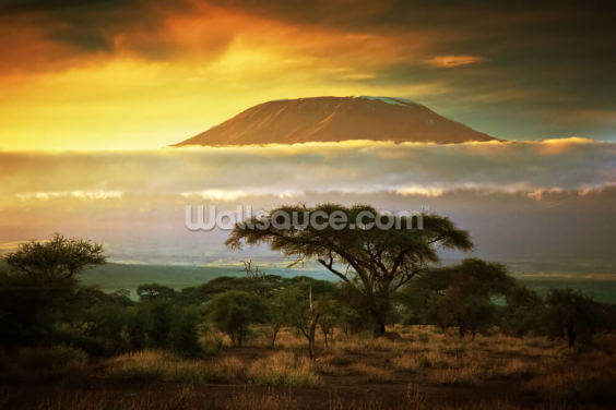 Mount Kilimanjaro, Kenya Wallpaper Wall Murals