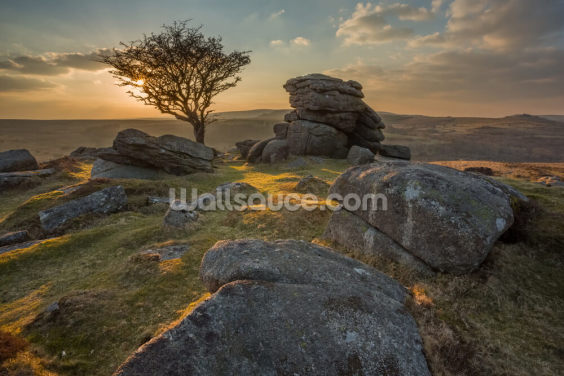 Emsworthy Dartmoor Wallpaper Wall Murals
