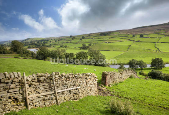 Swaledale, Yorkshire Wallpaper Wall Murals