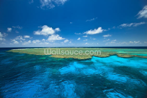 Clam Gardens, Great Barrier Reef Wallpaper Wall Murals