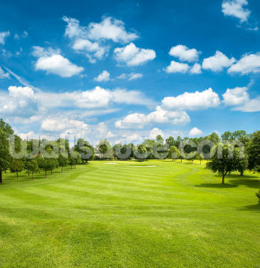 Green Golf Field and Blue Cloudy Sky Wallpaper Wall Murals