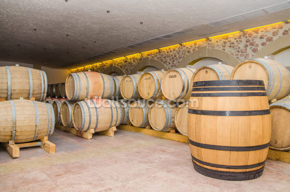 Barrels of Wine Wallpaper Wall Murals