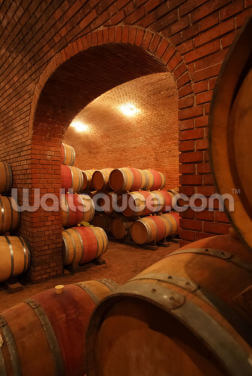 Wine Vault Wallpaper Wall Murals