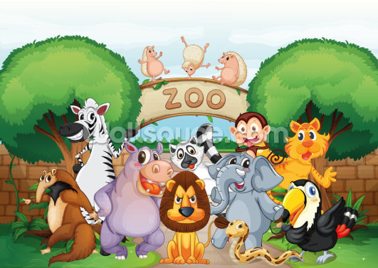 Animal Zoo Wallpaper Wall Murals