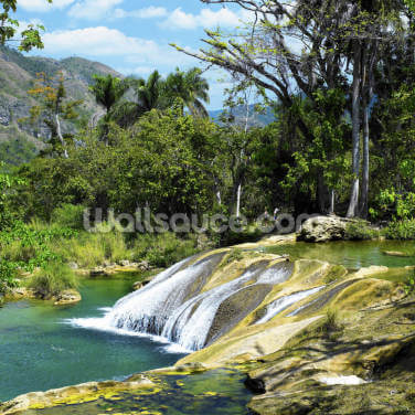 El Nicho Waterfall, Cuba Wallpaper Wall Murals