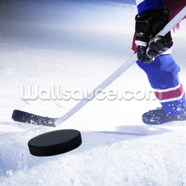 Ice Hockey Stick and Puck Wallpaper Wall Murals