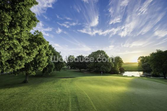 Dawn Sunburst, The Hertfordshire Golf & Country Club, England Wallpaper Wall Murals