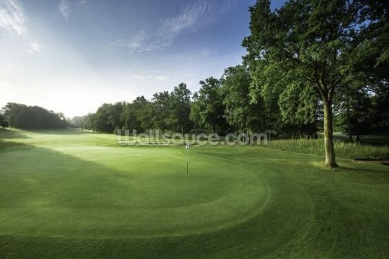 Tranquil Dawn Golf Wallpaper Wall Murals