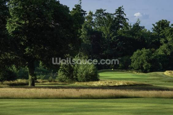 Sherfield Oaks Golf Wallpaper Wall Murals