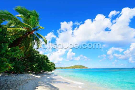 Virgin Islands Beach with Palms Wallpaper Wall Murals