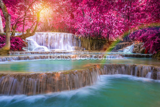Blossom Waterfall Wallpaper Wall Murals