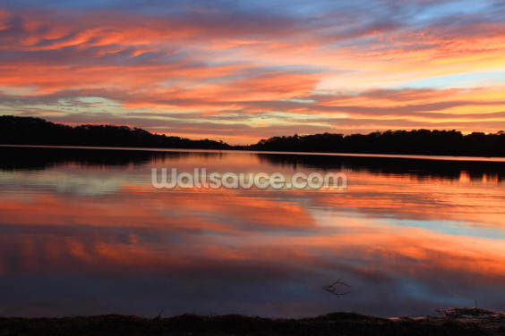 Sunrise Reflections Narrabeen Lakes Wallpaper Wall Murals