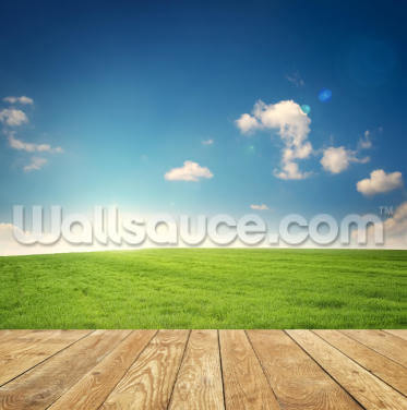 Sunrise Over the Hill Wallpaper Wall Murals
